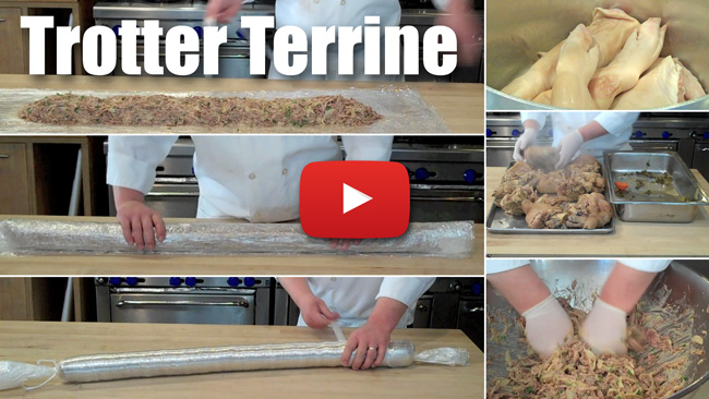 How to Make a Free Form Trotter Terrine Using Plastic Wrap - Video Technique