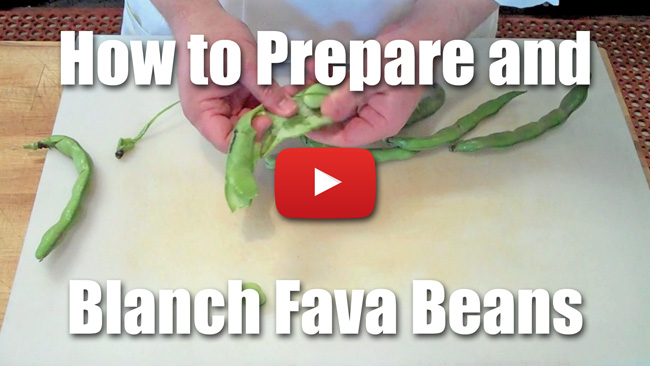 How to Peel, Blanch and Shuck Fava Beans - Video Technique