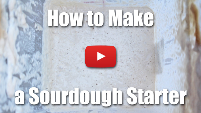 How to Make a Sourdough Starter - Video