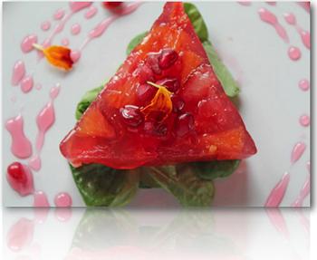 Fs 004 guide to agar gels stella culinary winter citrus terrine made using an agar gel forumfinder Choice Image