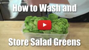 How to Wash and Store Salad Greens / Lettuce - Video Technique